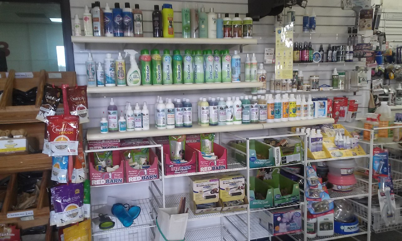 Inside my pet grooming shop, Pet Supplies at Ace Grooming by Sara 13